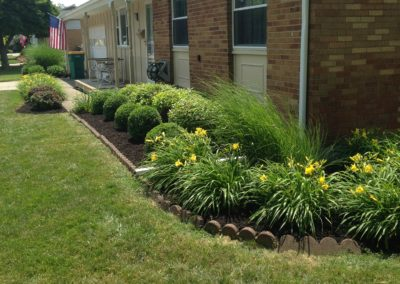 Place your trust in the landscaping experts.